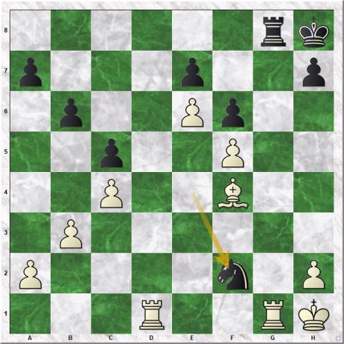 Janosevic Dragoljub - Petrosian Tigran V (34...Nf2#)