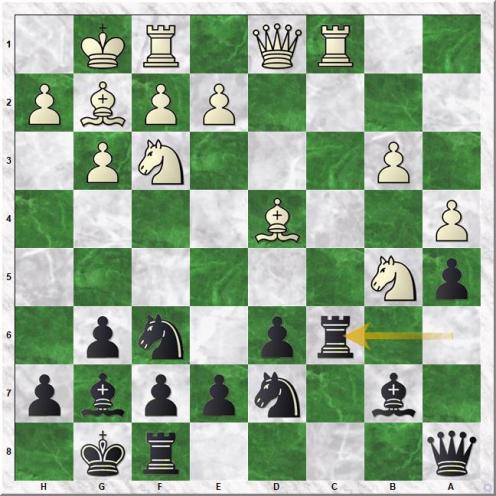 Meier Georg - Carlsen Magnus (16...Rc6)