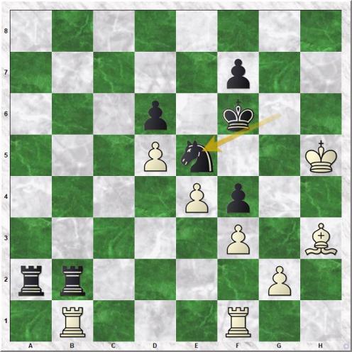 Kamsky Gata - Kasparov Garry (34...Ne5)