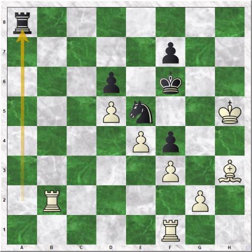 Kamsky Gata - Kasparov Garry (35...Ra8)