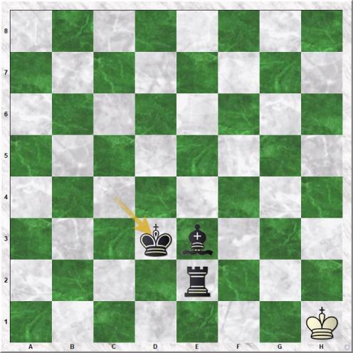 Vallejo Pons F - Carlsen M (68...Kxd3)