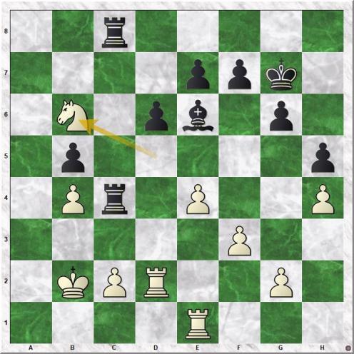 Anand Viswanathan - Kasparov Garry (30.Nb6  ).jpg