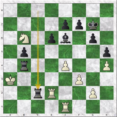Anand Viswanathan - Kasparov Garry (31...Rxc2)