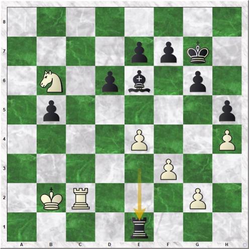 Anand Viswanathan - Kasparov Garry (34...Rxe1)