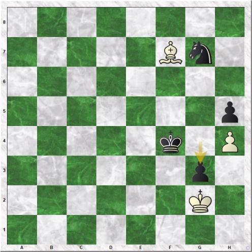 Gelfand Boris - Movsesian Sergei (89...g3)