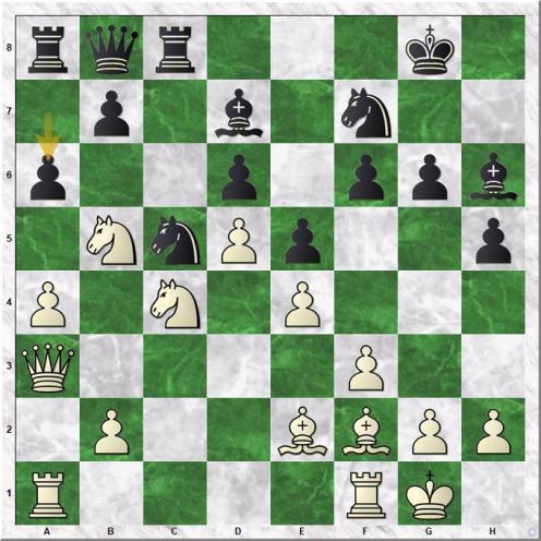 Gelfand Boris - Shirov Alexei (20...a6 )