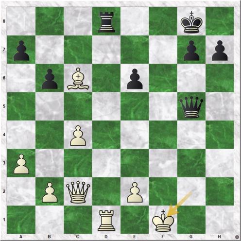 Dao Thien Hai - Ganguly Surya Shekhar (27.Kf1)