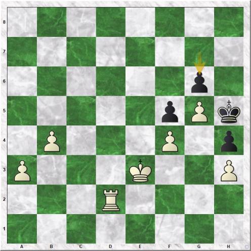 Mirzoev Azer - Pakleza Zbigniew (48...g6)