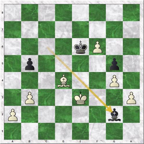 Aronian Levon - Karjakin Sergey (54...Bg2).jpg
