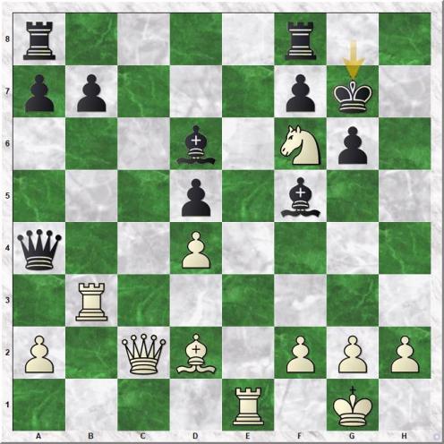 Paravyan David - Golubov Saveliy (21...Kg7)